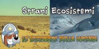 Le bizzarrie della NATURA – Strani Ecosistemi 2