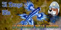 Il Drago Blu