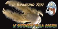 il Granchio Yeti