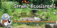 Le bizzarrie della NATURA – Strani Ecosistemi